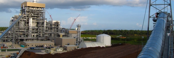 grec-plant-2014